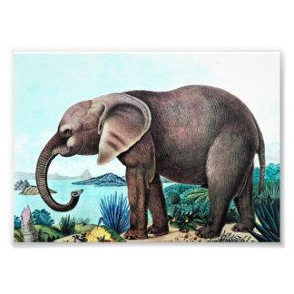 African Elephant Vintage Painting Photo Print