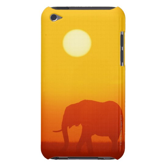 African elephant walking at sunset , Kenya , iPod Touch Cover