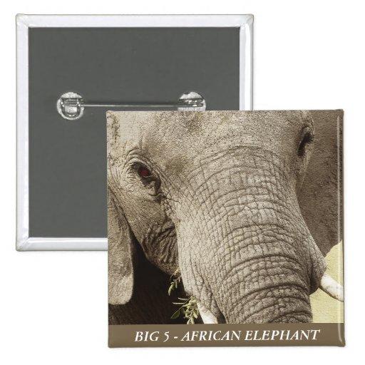 African elephant wildlife safari buttons badges