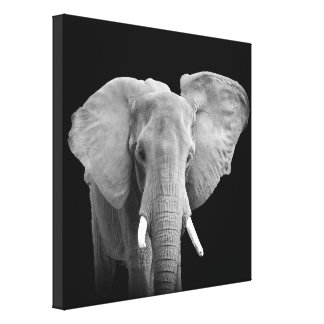 African Elephant - Wrapped Canvas