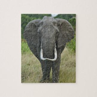 African Elephantna loxodonta, Masai Mara Game Jigsaw Puzzles