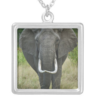 African Elephantna loxodonta, Masai Mara Game Custom Jewelry