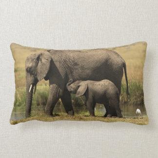 African Elephants at water pool Lumbar Pillow