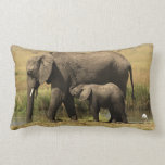 African Elephants at water pool Throw Pillow