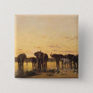 African Elephants Button