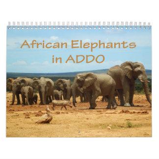 African Elephants in Addo Calendar