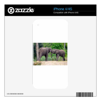 African Elephants Interacting Decal For The iPhone 4