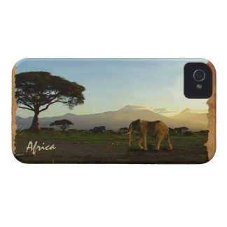 African Elephants & Rustic BG Phone Device Case iPhone 4 Cover