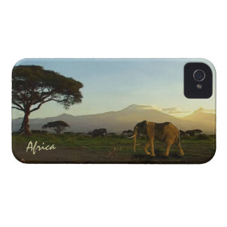 African Elephants & Savannah Phone Device Case iPhone 4 Covers