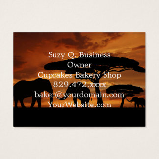 African elephants silhouettes in sunset business card