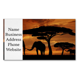 African elephants silhouettes in sunset business card magnet