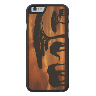 African elephants silhouettes in sunset carved® maple iPhone 6 slim case