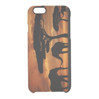 African elephants silhouettes in sunset clear iPhone 6/6S case