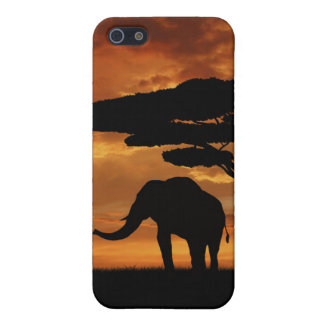 African elephants silhouettes in sunset cover for iPhone SE/5/5s
