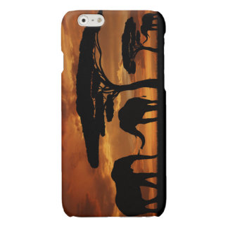 African elephants silhouettes in sunset glossy iPhone 6 case