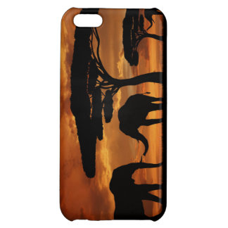 African elephants silhouettes in sunset iPhone 5C case
