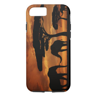 African elephants silhouettes in sunset iPhone 7 case