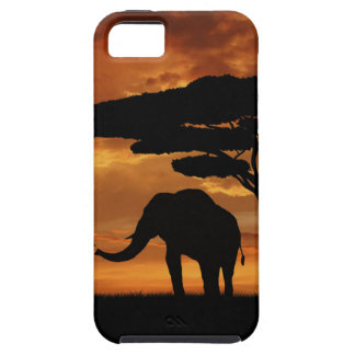 African elephants silhouettes in sunset iPhone SE/5/5s case