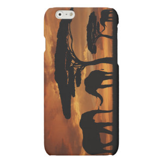 African elephants silhouettes in sunset matte iPhone 6 case