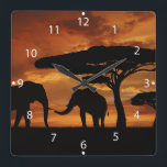 "African elephants silhouettes in sunset square wall clock<br><div class=""desc"">&quot;elephant silhouette&quot;, safari&#160;, sunset&#160;, elephant&#160;, silhouette&#160;, elephants&#160;, &quot;african elephant&#160;the elephant&quot;&#160;, &quot;african elephants&quot;&#160;, sillouette&#160;, &quot;silhouette art&quot;&#160;, &quot;elephant habitat&quot;&#160;, &quot;elephants in africa&quot;&#160;, &quot;silhouette elephant&quot;, &quot;elephant silhouettes&quot; , sky&#160;, animals&#160;, sunrise&#160;, nature&#160;, africa&#160;, wild&#160;, tree&#160;, kenya&#160;, tanzania&#160;, national&#160;, landscape&#160;, savannah&#160;, landmark&#160;, fauna&#160;, illustration&#160;, tropical&#160;, reserve&#160;, scenic&#160;, wildlife&#160;, african&#160;, savanna&#160;, steppe&#160;, panoramic&#160;, silhouettes&#160;, silouette&#160;, ...</div>"