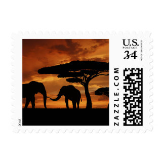 African elephants silhouettes in sunset stamp