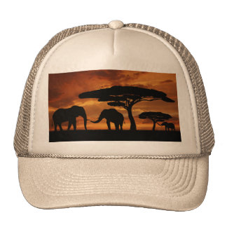 African elephants silhouettes in sunset trucker hat