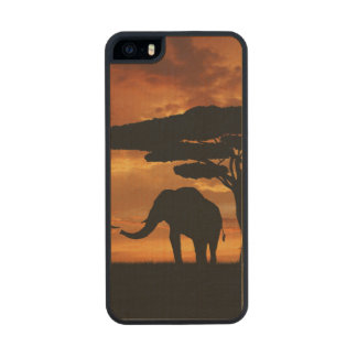 African elephants silhouettes in sunset wood phone case for iPhone SE/5/5s
