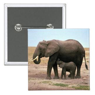 African Elephants - Small Calf Nursing Button