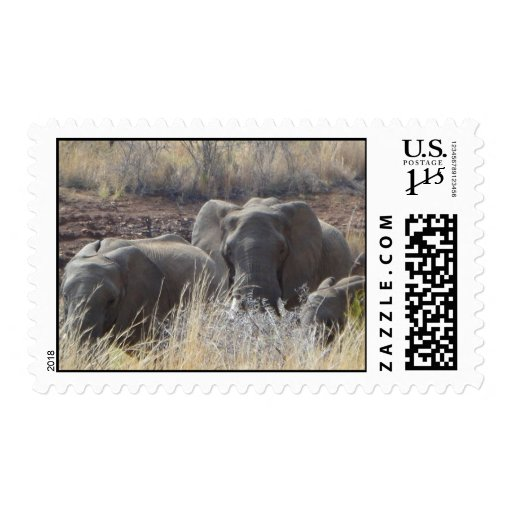 African Elephants Stamps