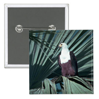 African Fish Eagle 2 Inch Square Button