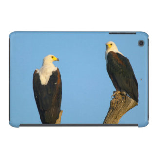 African Fish Eagle (Haliaeetus Vocifer) iPad Mini Cover