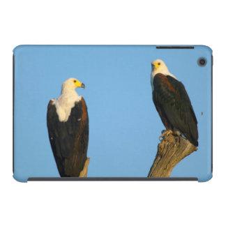 African Fish Eagle (Haliaeetus Vocifer) iPad Mini Retina Case