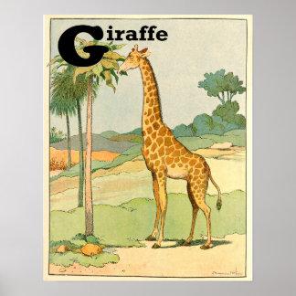 African Giraffe Alphabet Poster