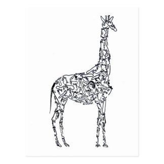 AFRICAN GIRAFFE by NICHOLAS Postcard