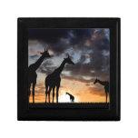 African giraffe keepsake box
