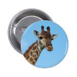 African Giraffe Wild Animal Photo Design Pinback Button