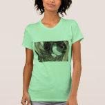 African Goshawk Tee Shirts