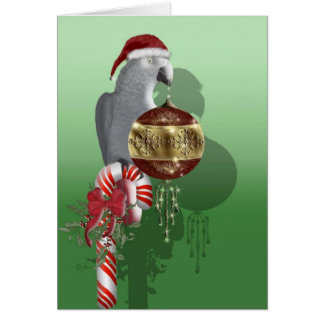 African Gray Christmas Greeting Card