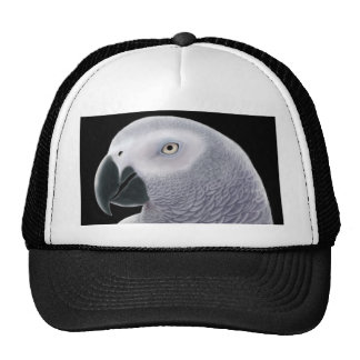 African Gray Hat