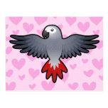 African Grey / Amazon / Parrot Love Postcard