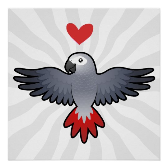 African Grey / Amazon / Parrot Love Poster
