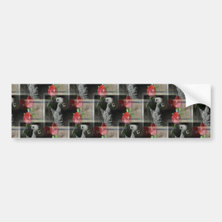 African Grey and Geometric Red Roses Bumper Sticker