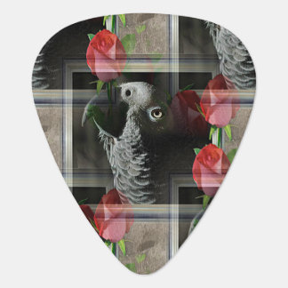 African Grey and Geometric Red Roses Guitar Pick