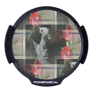 African Grey and Geometric Red Roses LED Car Decal
