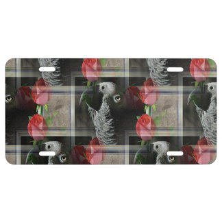 African Grey and Geometric Red Roses License Plate
