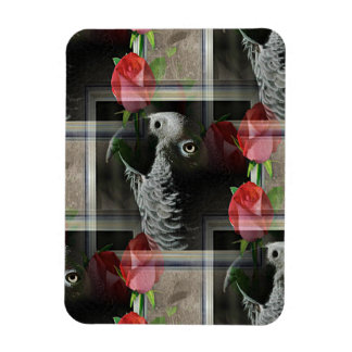 African Grey and Geometric Red Roses Magnet