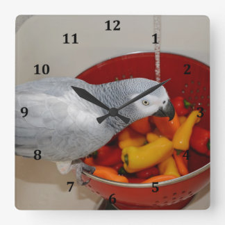 African Grey and Sweet Peppers Square Wallclock