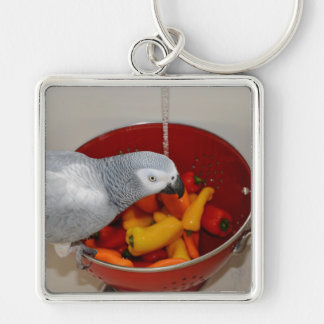 African Grey and Sweet Peppers Keychain