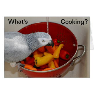 African Grey Cooking Kitchen Helper Greeting Card