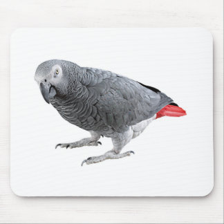 """African Grey"" design gifts and products Mouse Pad"